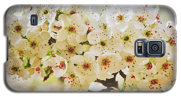 Pear Tree Blossoms   Galaxy S5 Case