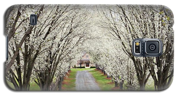Galaxy S5 Case featuring the photograph Pear Tree Lane by Benanne Stiens