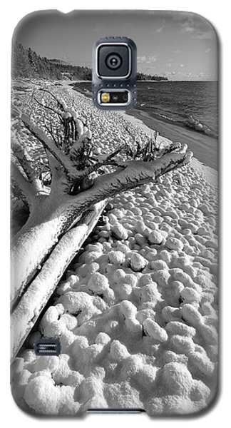 Pebble Beach Winter Galaxy S5 Case