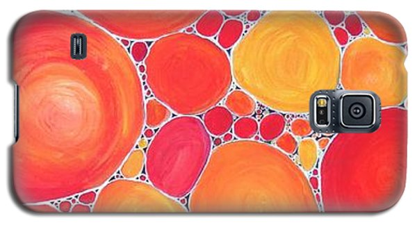 Pebbles At Sunset  Galaxy S5 Case