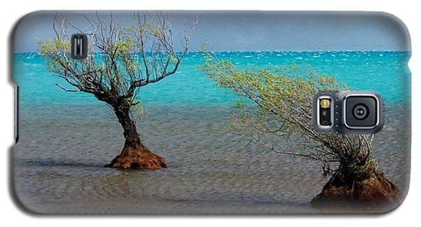 Peculiar Trees Galaxy S5 Case
