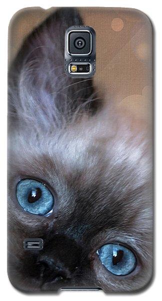 Peek-a-boo 2 Galaxy S5 Case