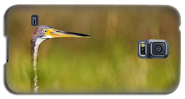Galaxy S5 Case featuring the photograph Peek-a-boo Birdie by Bob Decker