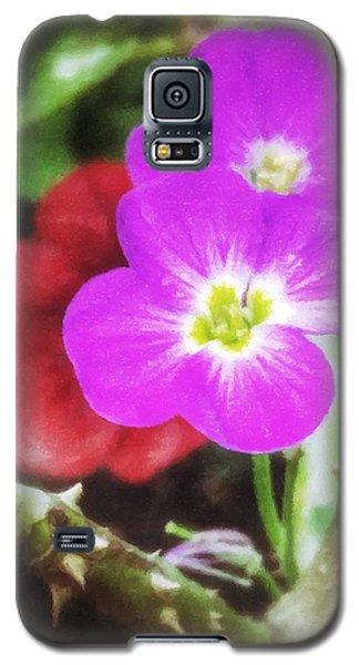 Peek A Boo Galaxy S5 Case