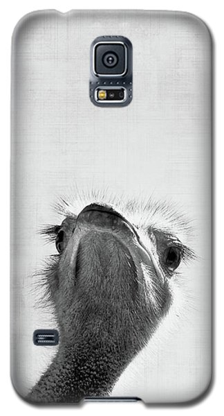 Ostrich Galaxy S5 Case - Peekaboo Ostrich by Delphimages Photo Creations