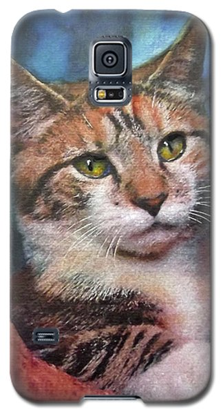 Peekaboo Tabby Galaxy S5 Case
