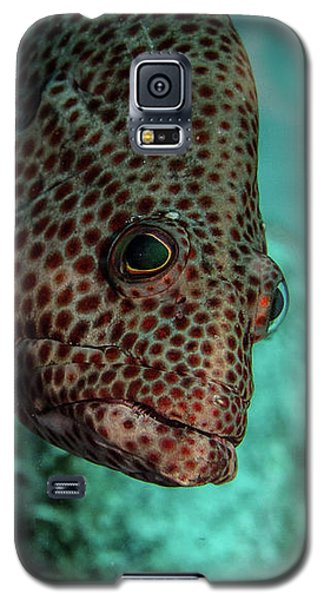 Galaxy S5 Case featuring the photograph Peeking Coney by Jean Noren