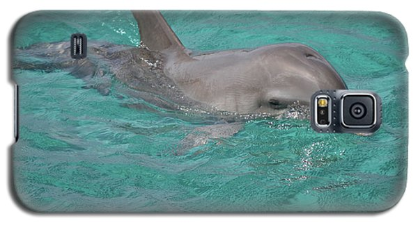 Peeking Dolphin Galaxy S5 Case