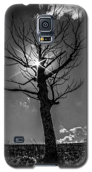 Peeking Sun Galaxy S5 Case