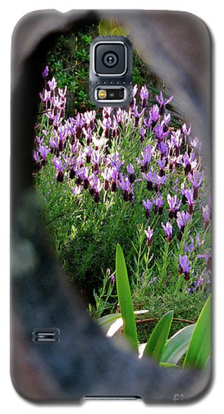 Peephole Garden Galaxy S5 Case by CML Brown