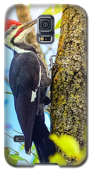 Peggy Franz Galaxy S5 Case