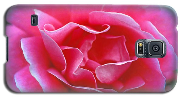 Galaxy S5 Case featuring the photograph Peggy Lee Rose Bridal Pink by David Zanzinger