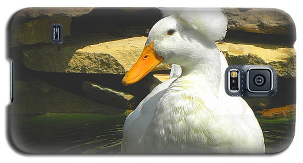 Galaxy S5 Case featuring the photograph Pekin Pop Top Duck by Sandi OReilly
