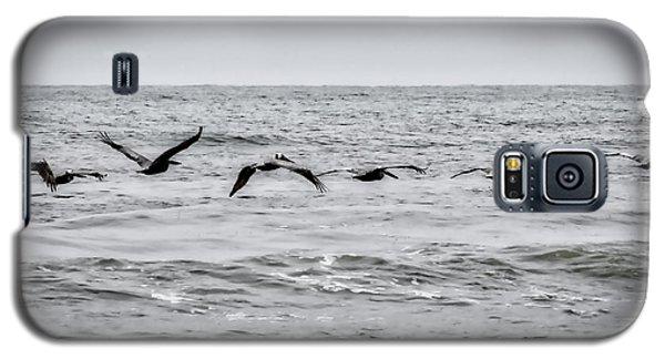 Pelican Black And White Galaxy S5 Case