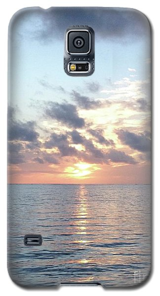 Pelican Dawn Galaxy S5 Case