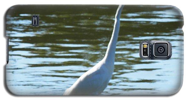 Pelican Emerging Galaxy S5 Case