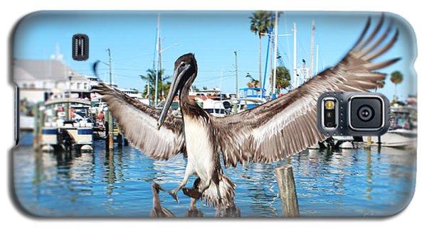Pelican Flying In Galaxy S5 Case