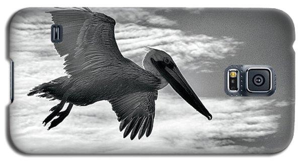 Pelican In Flight Galaxy S5 Case by AJ Schibig
