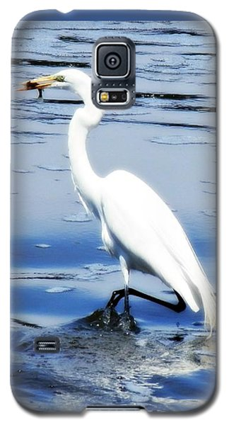 Pelican In It's Glory Galaxy S5 Case