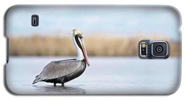 Pelican In Paradise Galaxy S5 Case