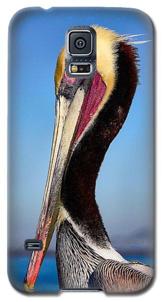 Pelican Looking Galaxy S5 Case