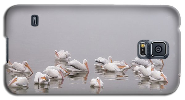 Galaxy S5 Case featuring the photograph Pelicans On The Lake by Carolyn Dalessandro