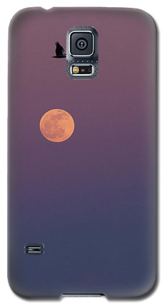 Pelican Over The Moon Galaxy S5 Case