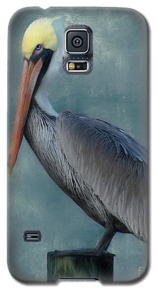 Galaxy S5 Case featuring the photograph Pelican Portrait by Benanne Stiens