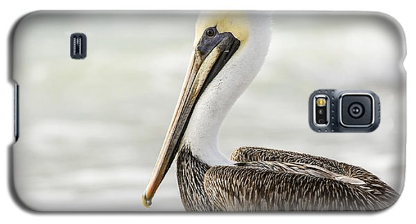 Pelican Pose Galaxy S5 Case