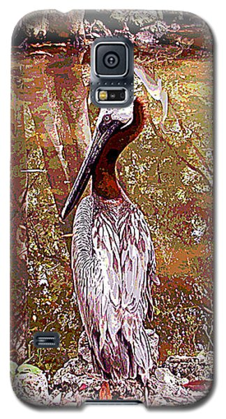 Pelican Posed Galaxy S5 Case