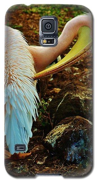 Pelican Preening Galaxy S5 Case