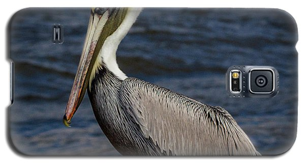 Galaxy S5 Case featuring the photograph Pelican Profile 2 by Jean Noren