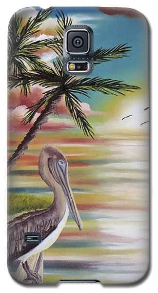 Pelican Sunset Galaxy S5 Case by Dianna Lewis