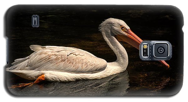 Pelican Swimming In Salisbury Galaxy S5 Case