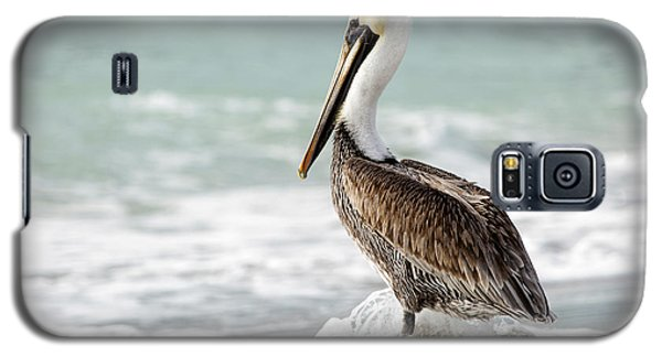 Pelican Waves Galaxy S5 Case