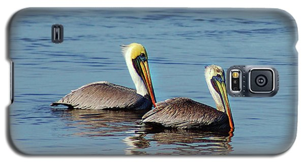 Pelicans 2 Together Galaxy S5 Case