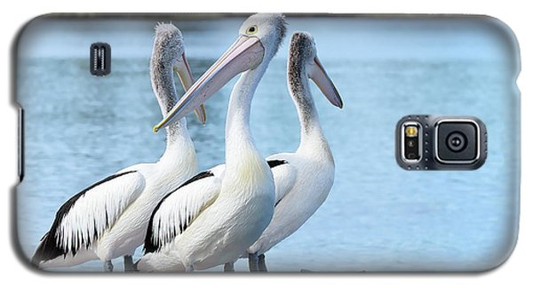 Pelicans 6663. Galaxy S5 Case