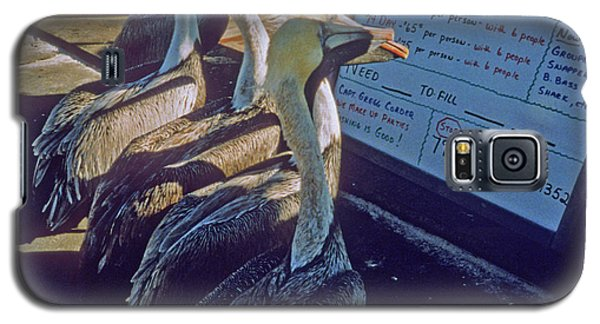 Pelicans And The Menu Galaxy S5 Case
