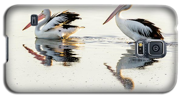 Pelicans At Dusk Galaxy S5 Case by Werner Padarin