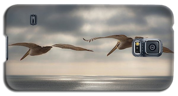 Pelicans At Sea Galaxy S5 Case