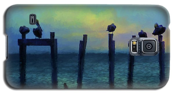 Galaxy S5 Case featuring the photograph Pelicans At Sunset by Jan Amiss Photography