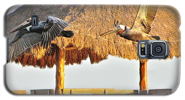 Galaxy S5 Case featuring the photograph Pelicans In Flight by Sean Griffin