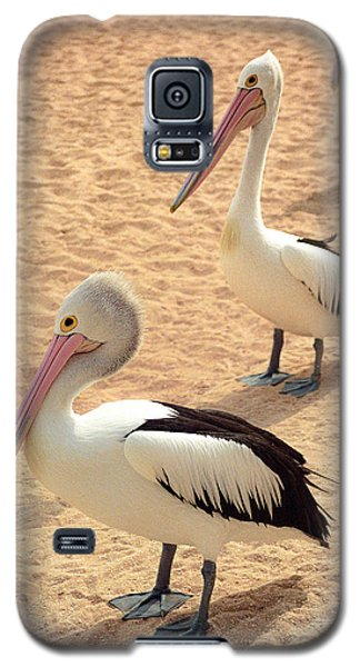 Pelicans Seriously Chillin' Galaxy S5 Case