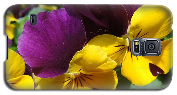 Galaxy S5 Case featuring the photograph Pella Pansies by Peg Toliver