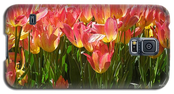 Galaxy S5 Case featuring the photograph Pella Tulips Yellow Pink by Peg Toliver