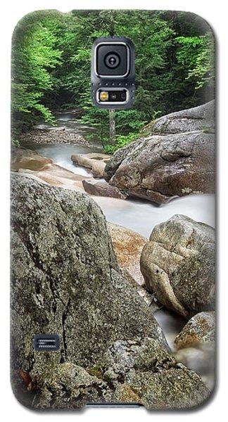 Pemi Above Basin Galaxy S5 Case