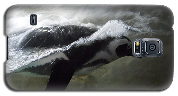 Penguin Galaxy S5 Case by Maggy Marsh