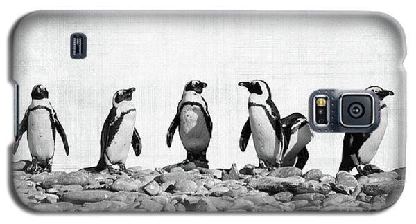 Penguins Galaxy S5 Case