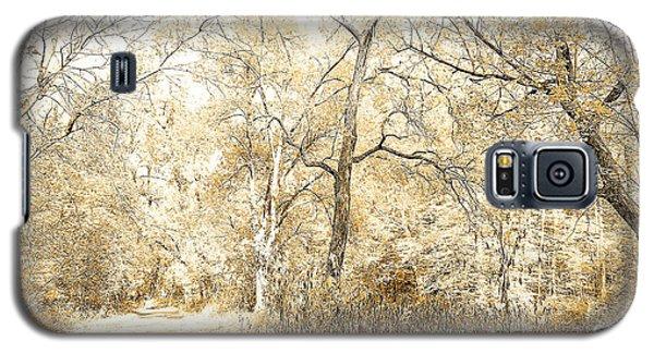 Pennsylvania Autumn Woods Galaxy S5 Case