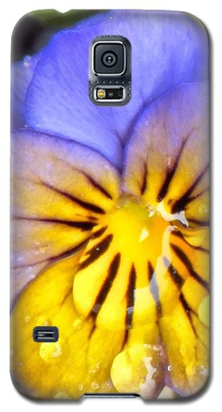 Pensee Bicolore Galaxy S5 Case by Marc Philippe Joly